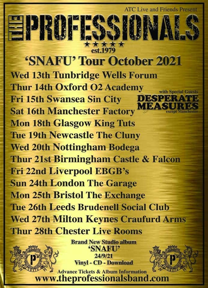 The Professionals And Desperate Measures Tour Poster